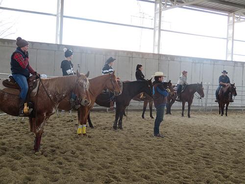 Fekete Lovastanya lovas edzés
